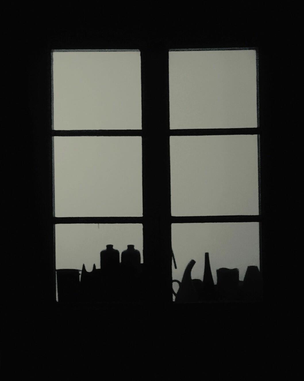 Stilleben i köksfönstret.