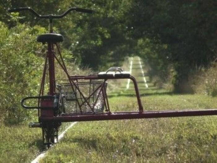 Cykla dressin på Österlen