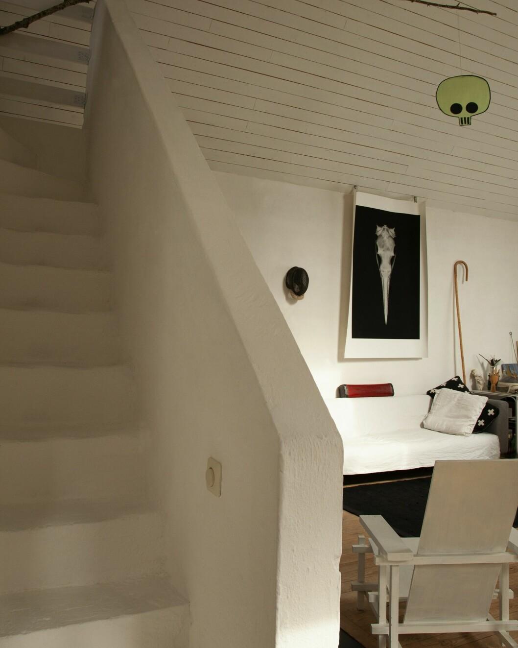 Fågelskalle-bilden ur serien Ornitologen som är ett av Björns pågående projekt. Just denna ställdes ut tillsammans med åtta andra på Lars Liliendahls Double Elvis Gallery 2012.
