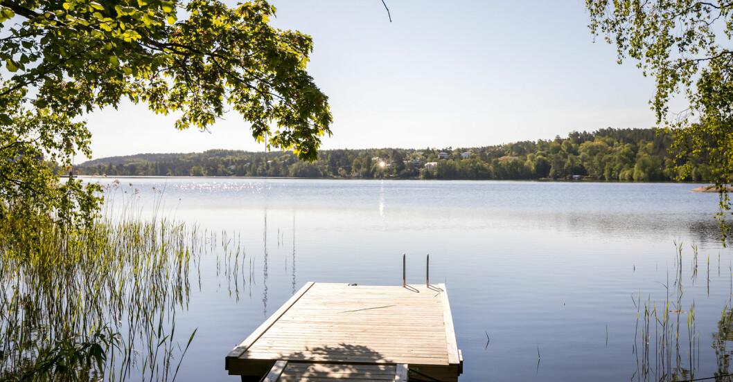 Husets egna vattenområde med flotte.