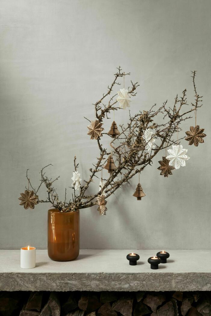 5 alternativa julgranslösningar, pynta växter
