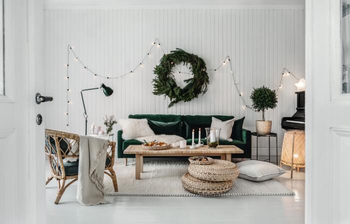 5 alternativa julgranslösningar, gröna julväxter