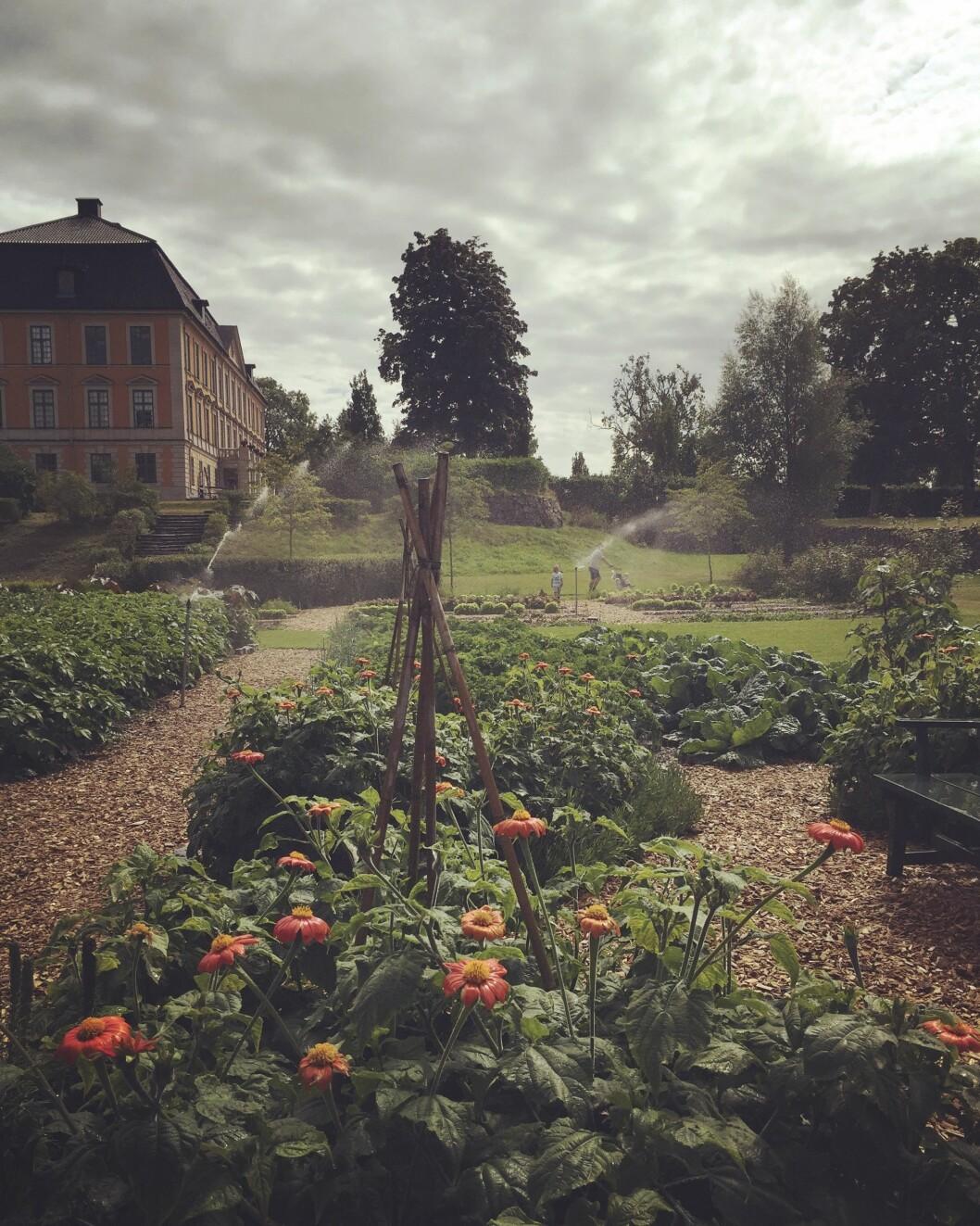 Vy av Nynäs slott.