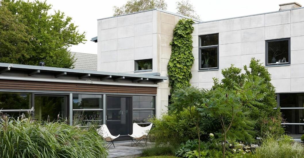 Unika betongfasaden på uppmärksammade huset är en spännande kontrast till en vild trädgård.