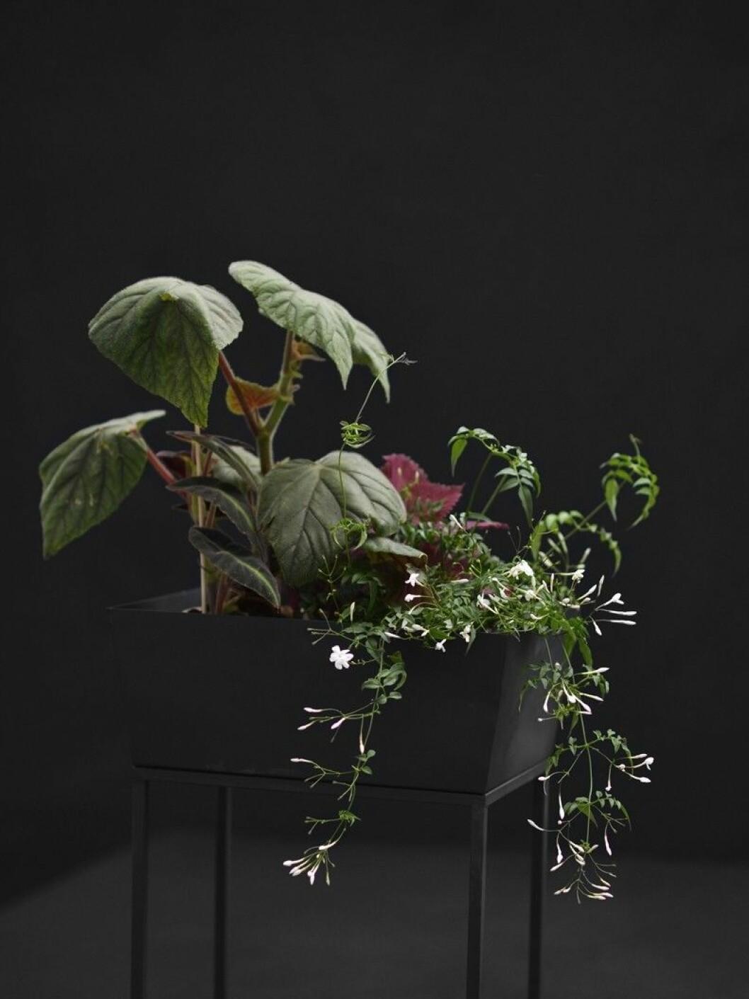 blomsterbord från zetas