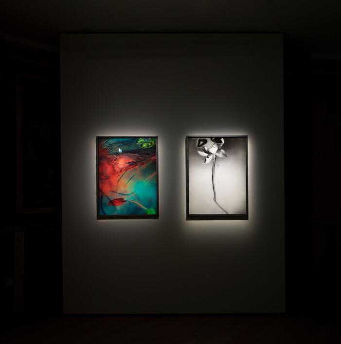 Denise Grünsteins utställning Nymphaeas på CFHILL i Stockholm