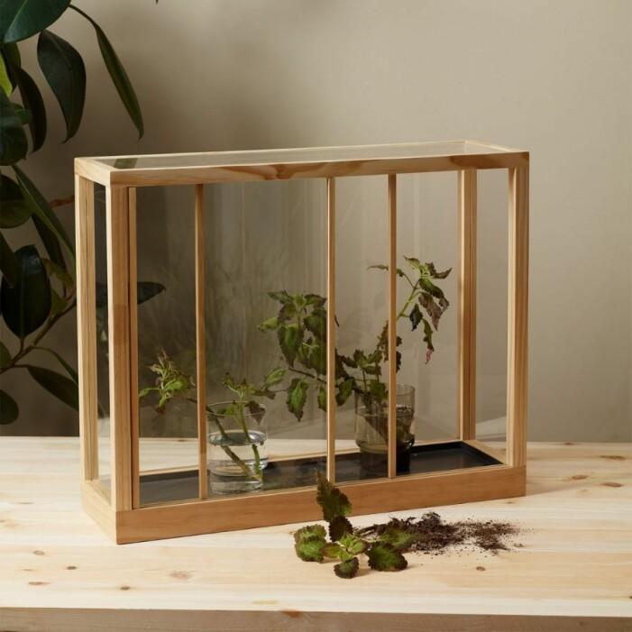 Växthus i furu från Designtorget