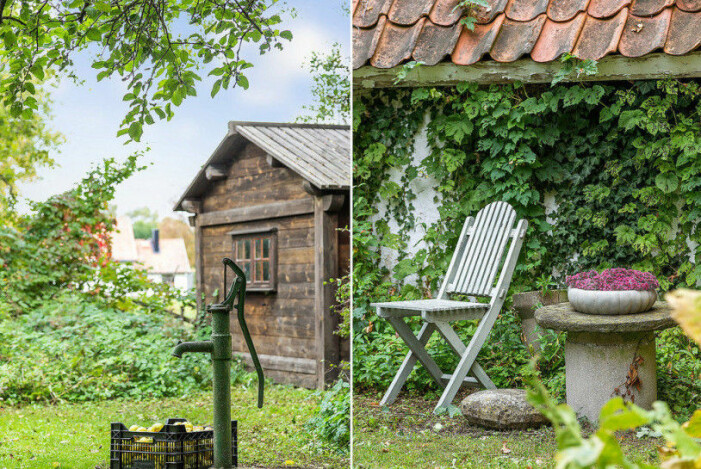 Gotlandshus trädgård