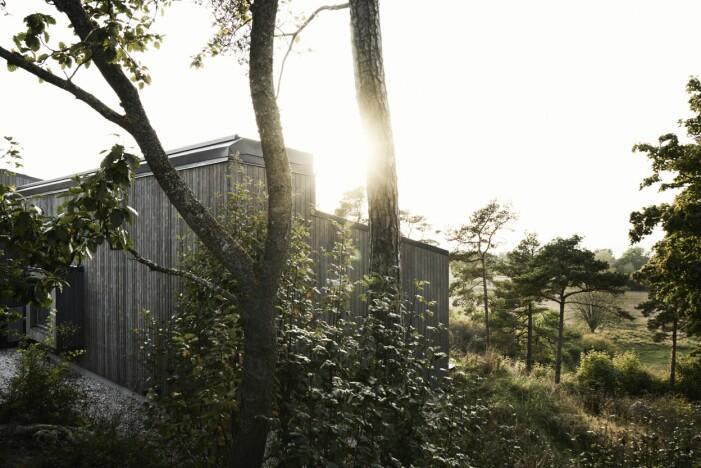 Sommarhus på Gotland ritat av M. Arkitektur