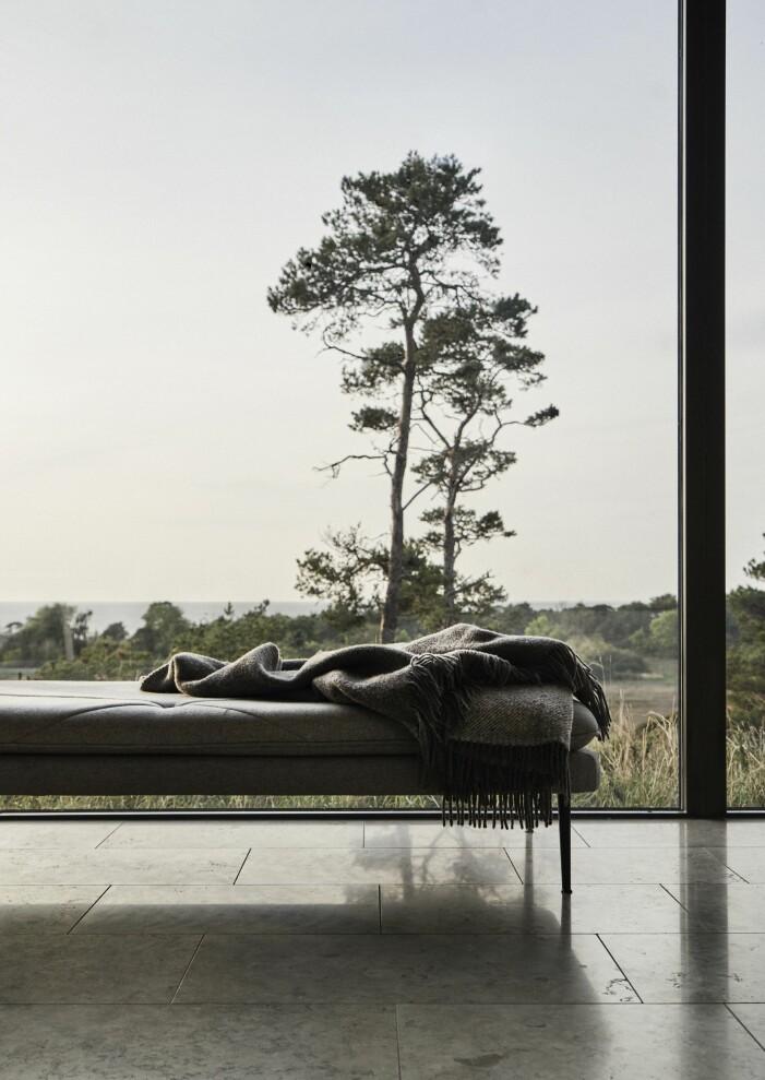 Utsikt över havet från sommarhus på Gotland