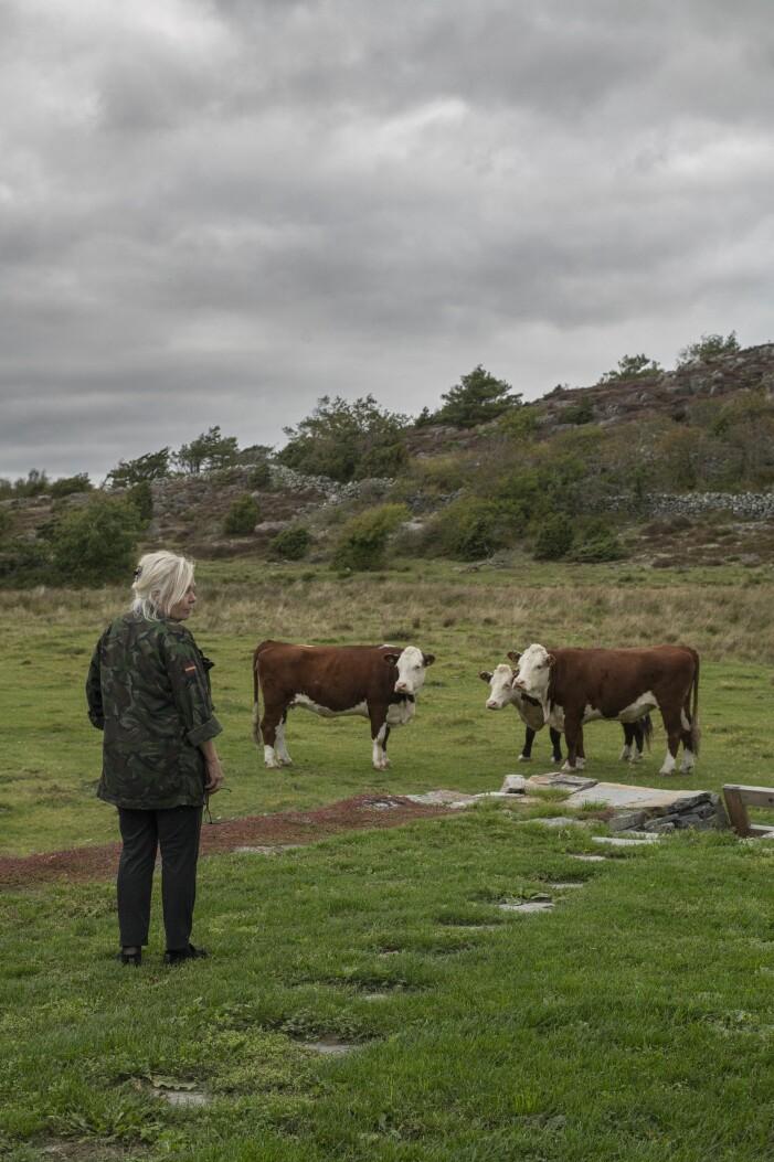 Gert Wingårdhs sommarställe Äggdal ligger precis vid ett naturreservat
