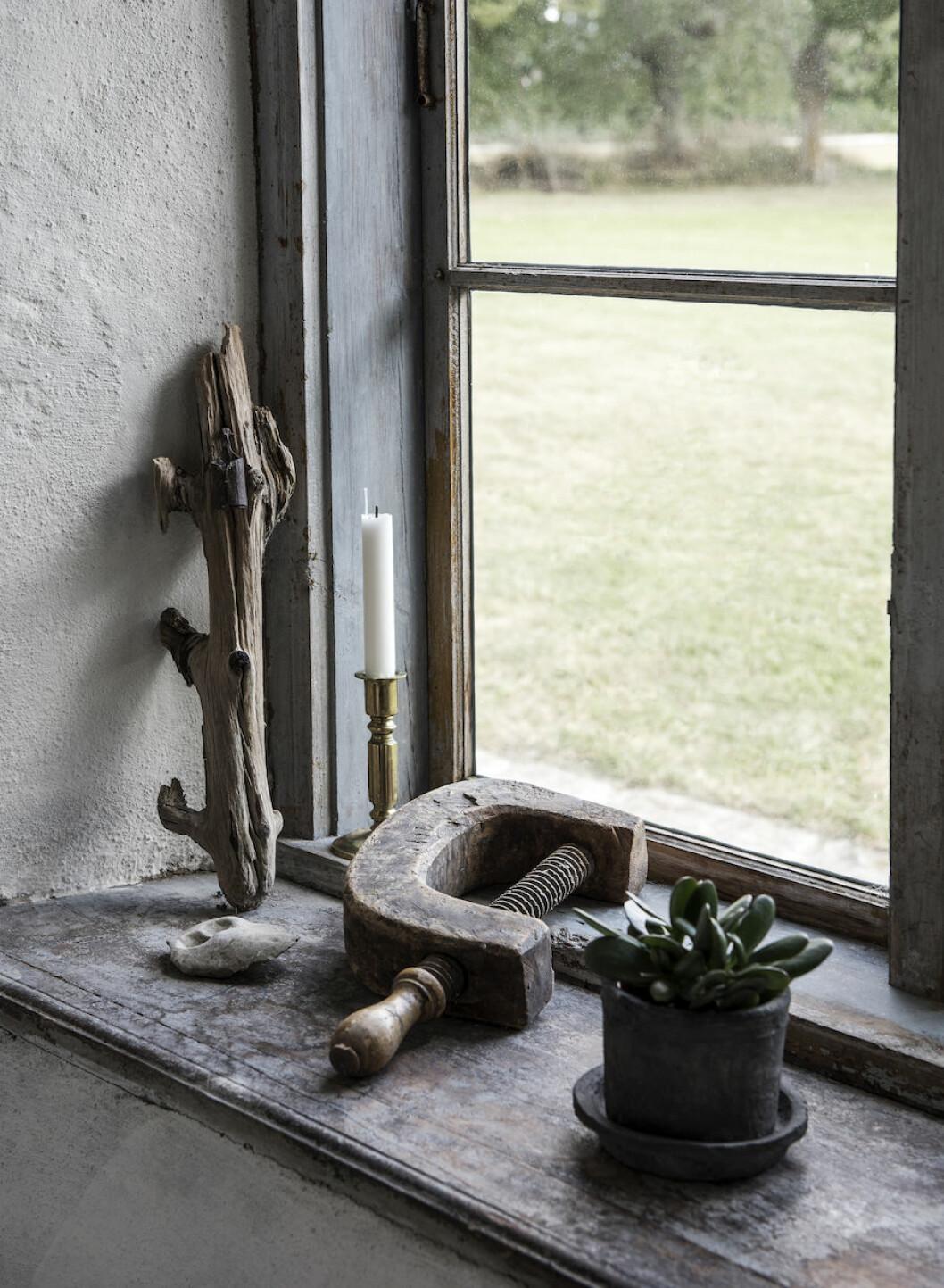 Antik tving och växter hemma hos Johan Lindskog och Joanna Sundström.