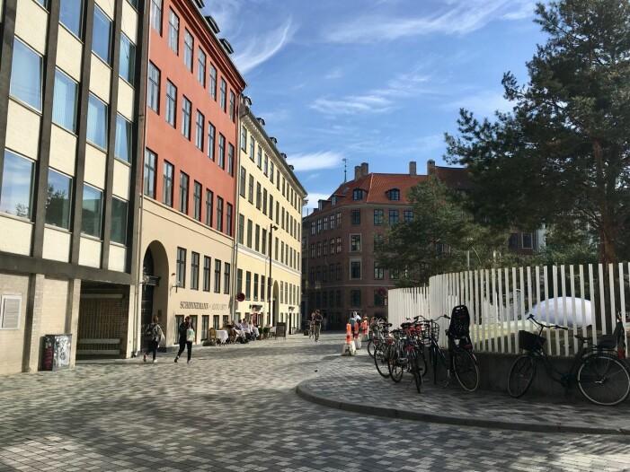 Hemma hos Mark Isitt i Köpenhamn