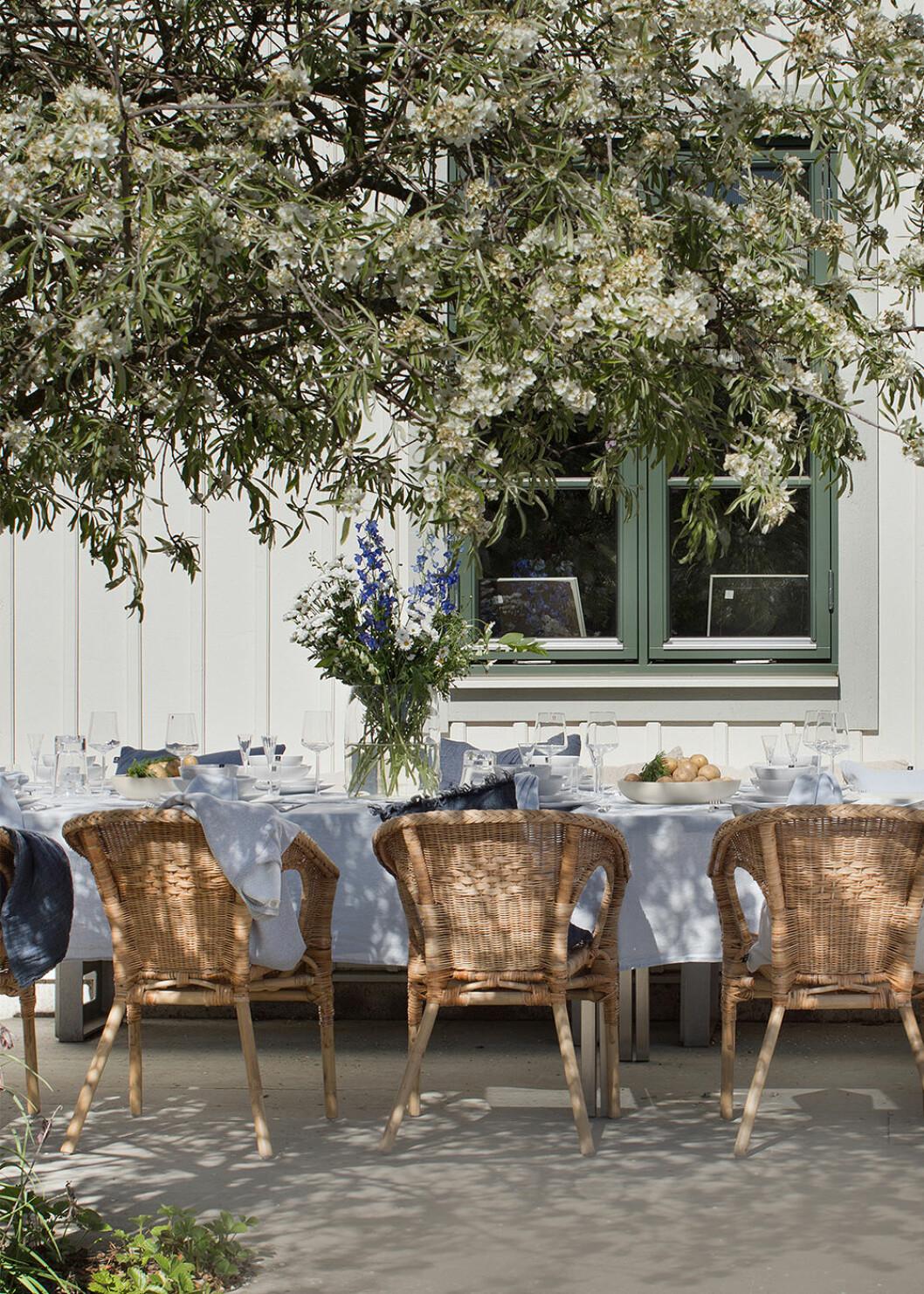 Midsommar - festdukat bord på sommaren