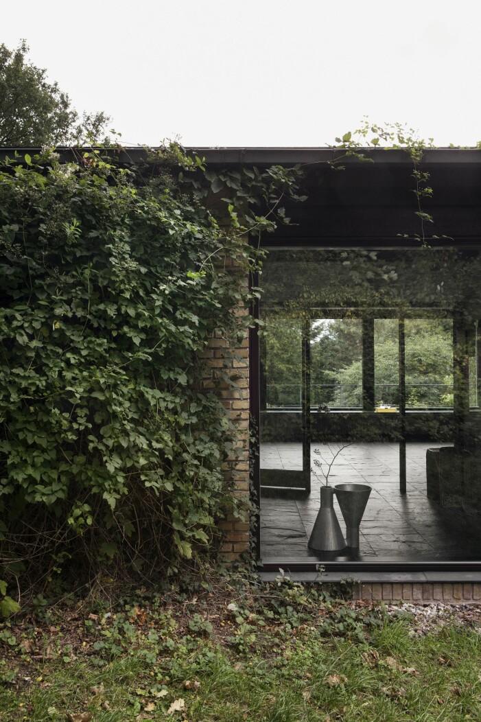 Fönster i fil