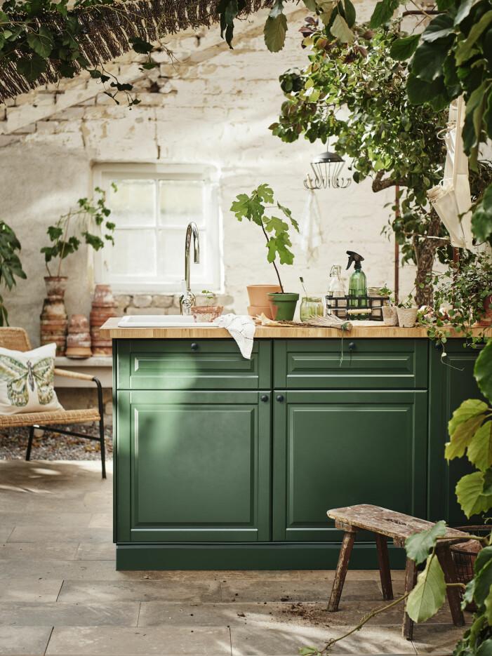 Inred med växter i ditt kök i sommar