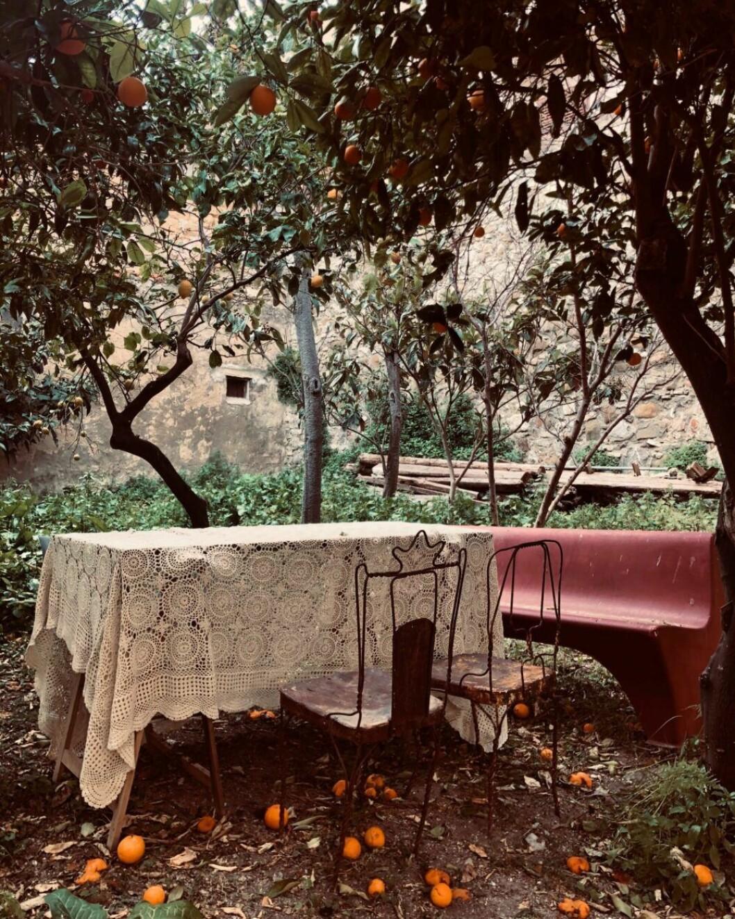 Trädgården vid Palazzo Cirillo