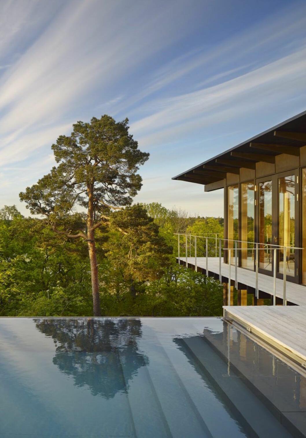 Infinitypool hemma hos Andreas Martin-Löf vid hans sommarhus på Värmdö.
