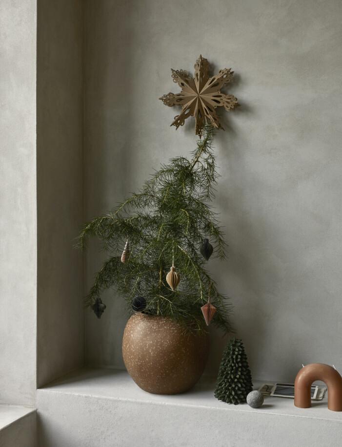 Inred med jul, minijulgranar