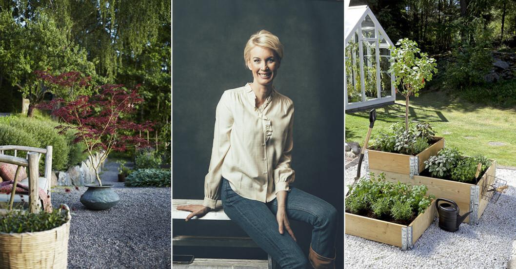 Nya trädgårdspodden Röda vita rosen med Jenny Strömstedt och Victoria Skoglund