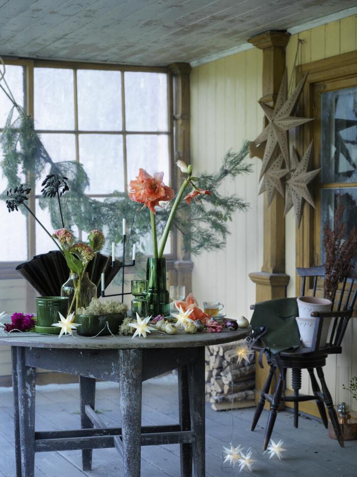 julblommor och dekorationer från åhléns