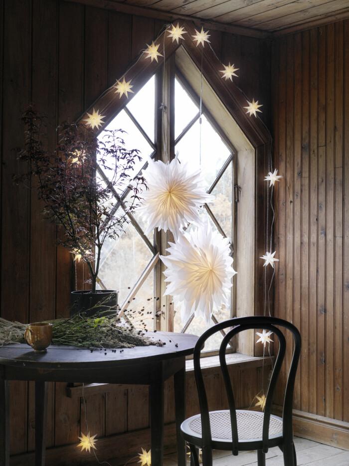 julstjärnor och ljusslinga från åhléns julen 2020