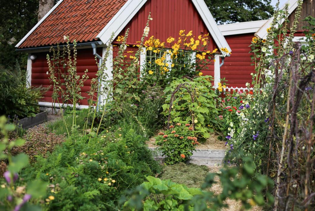 Bild från Tjolöholms Allmogeby.