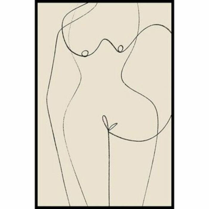 kvinnokropp abstrakt poster