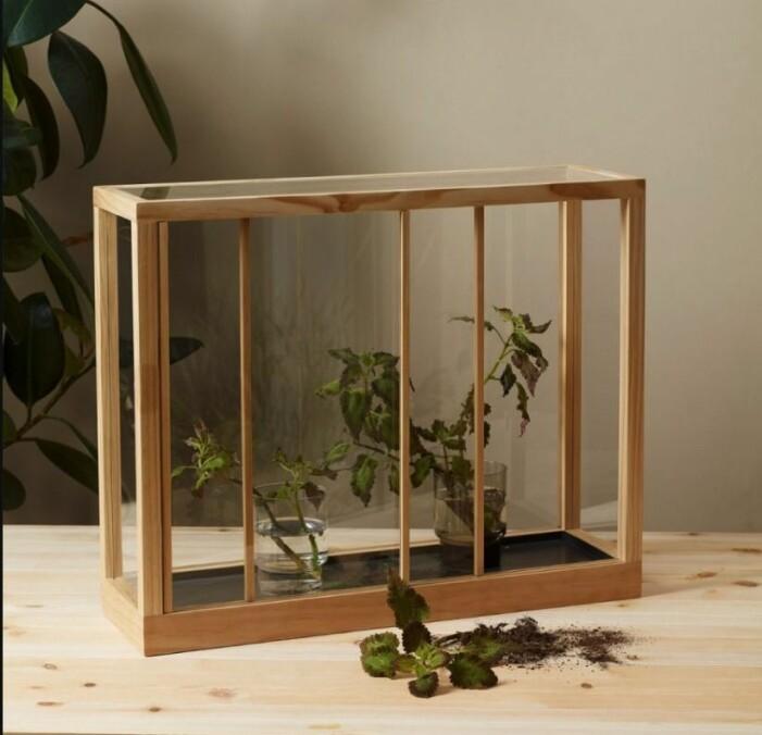växthus designtorget