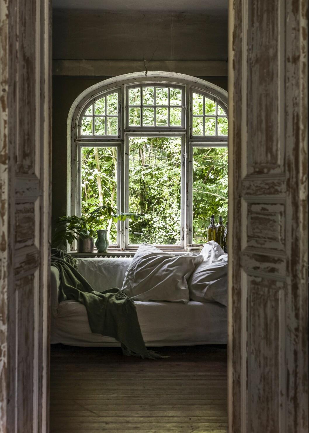 Husets gröna rum med loppissoffa framför fönstret.