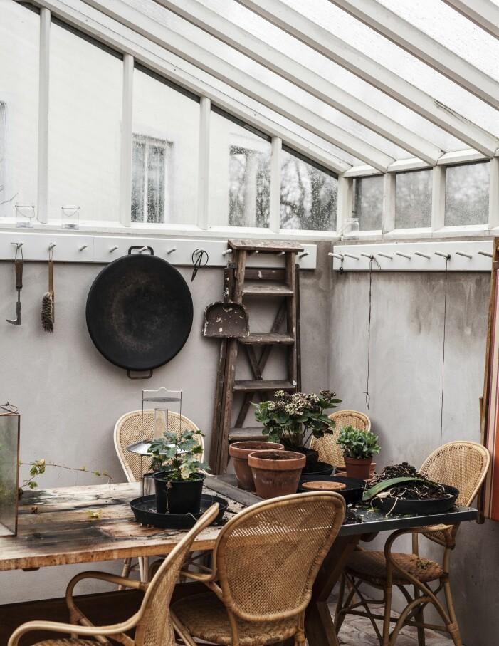 Växthus hemma hos grundarna av L:a bruket