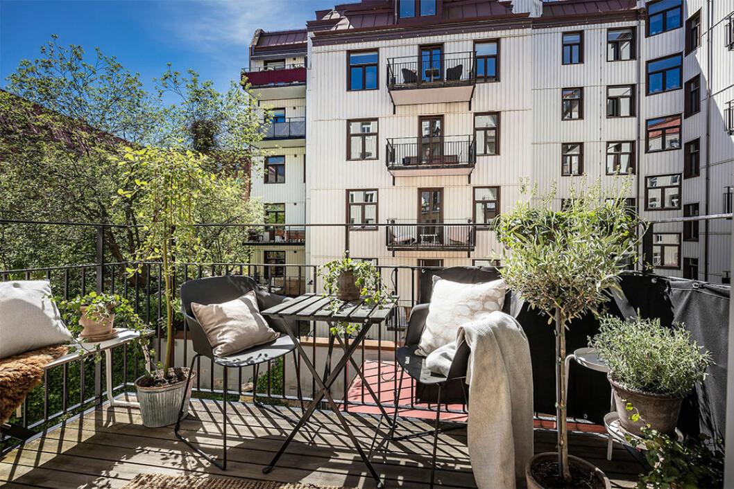 Mysig och fint inredd balkong med mycket växter