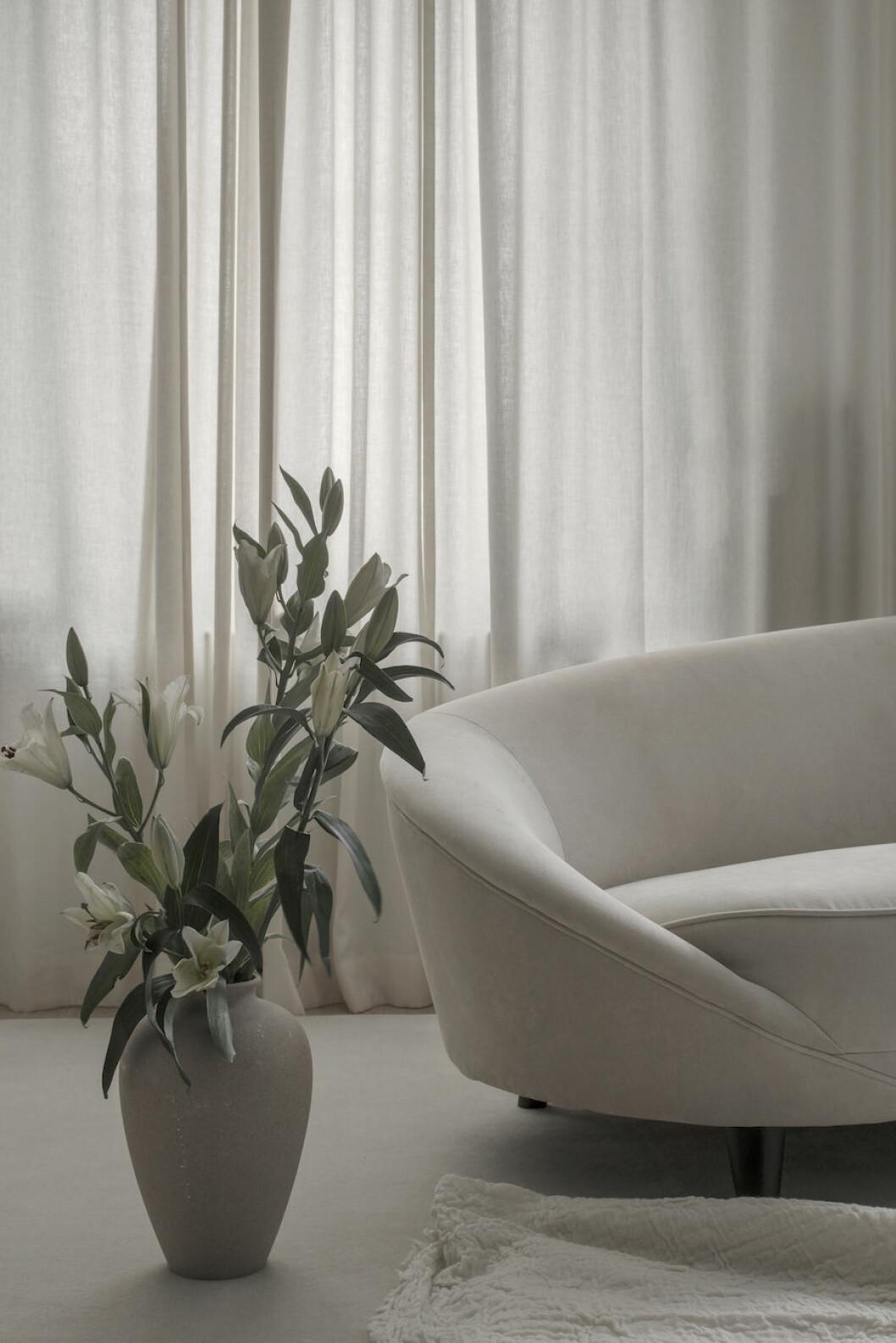 Närbild på soffa, och beige kruka med blomma.