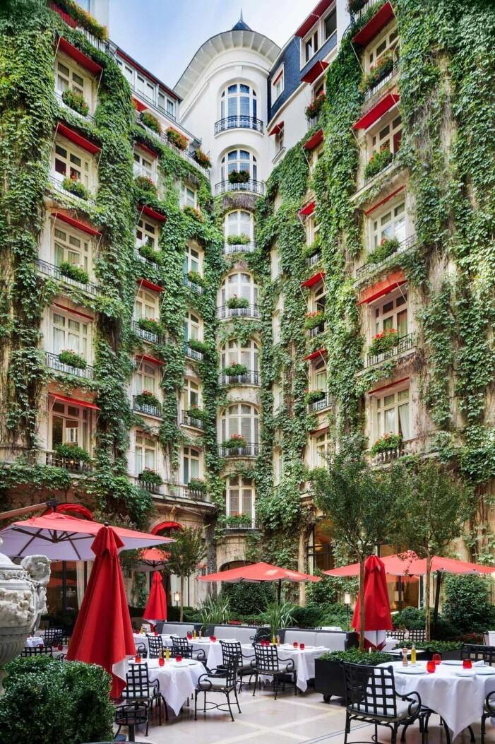 grönskande fasad