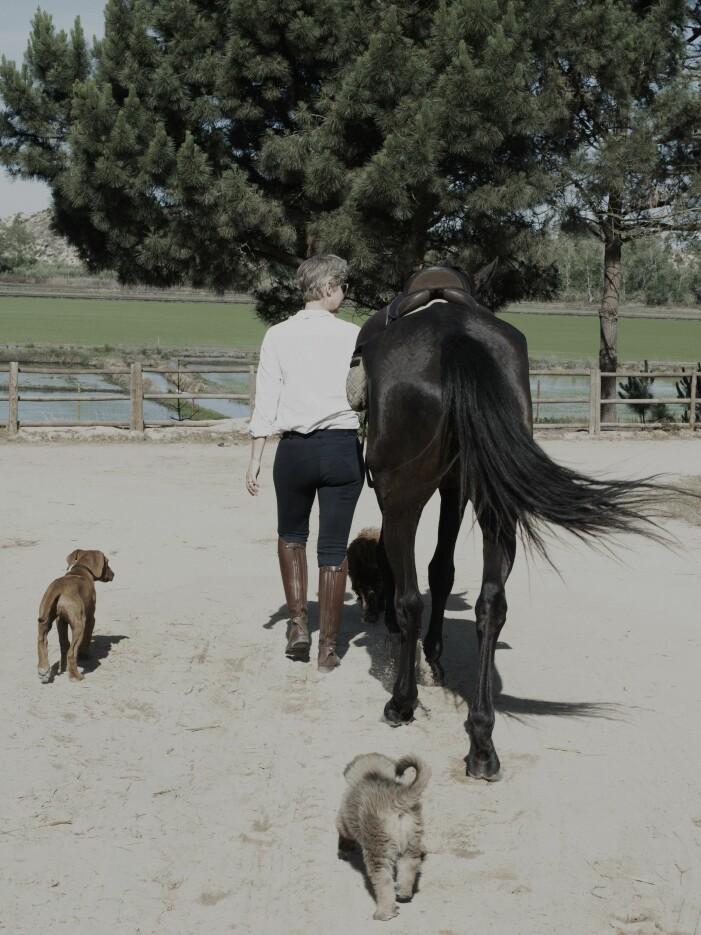 Pia Ulin med häst och hund