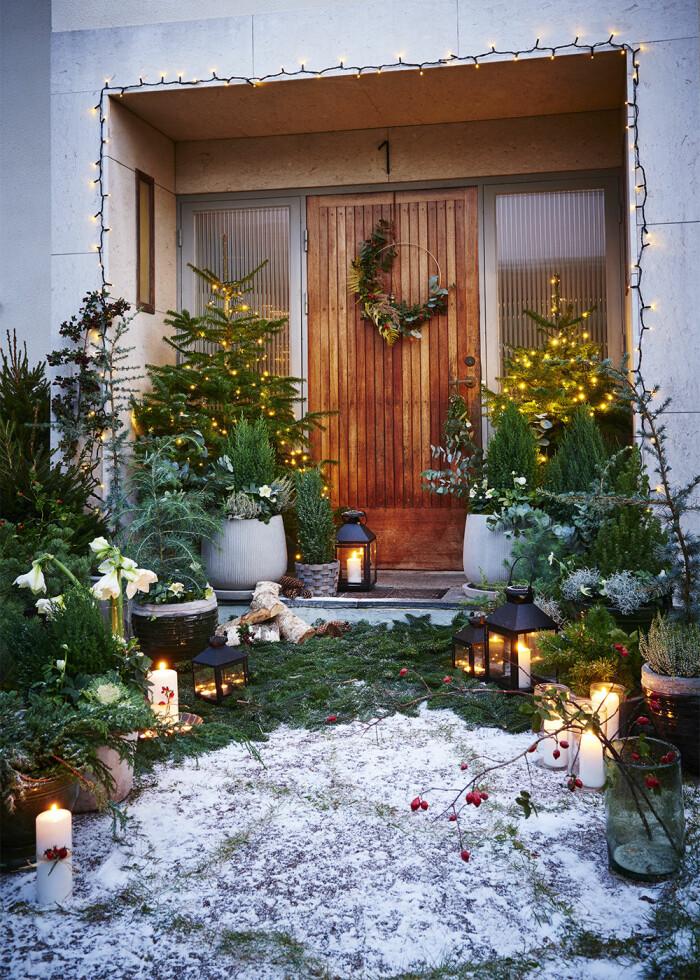 Frida Fahrmans julpyntade trädgård