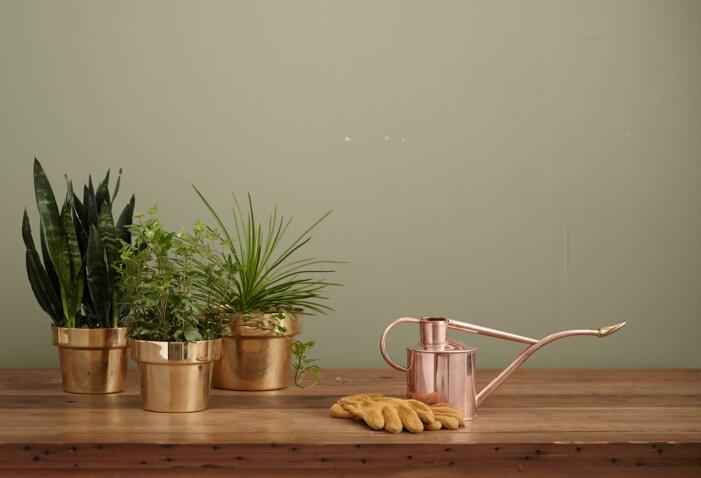 Så rengör du mässing, fyra enkla och effektiva sätt