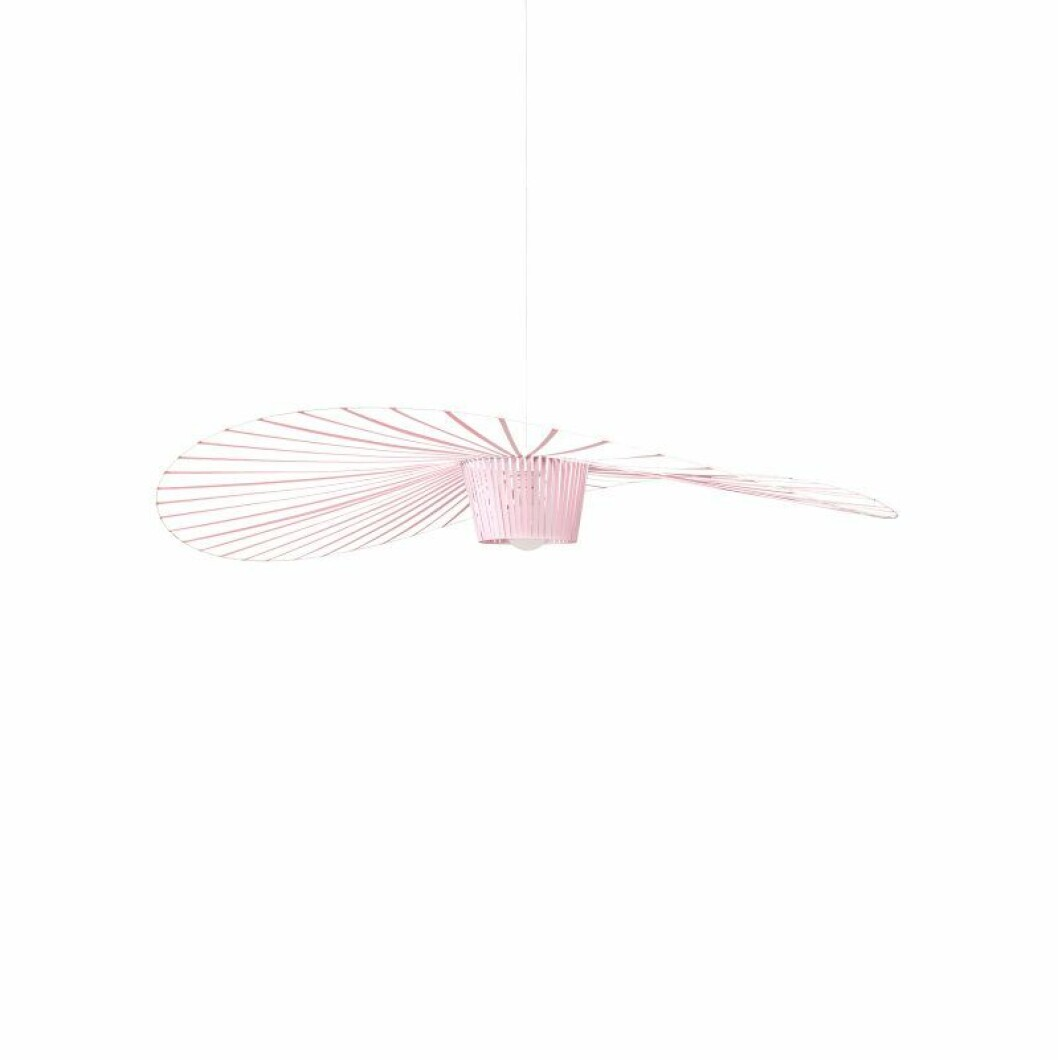 Rosa lampa