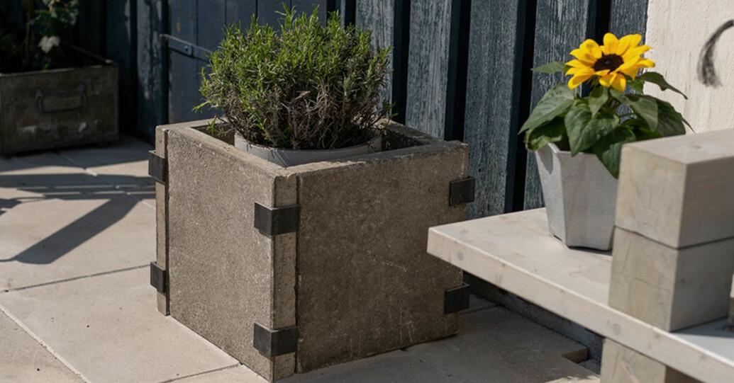 Så gör du en snygg betongkruka, DIY-tips från Sommar med Ernst