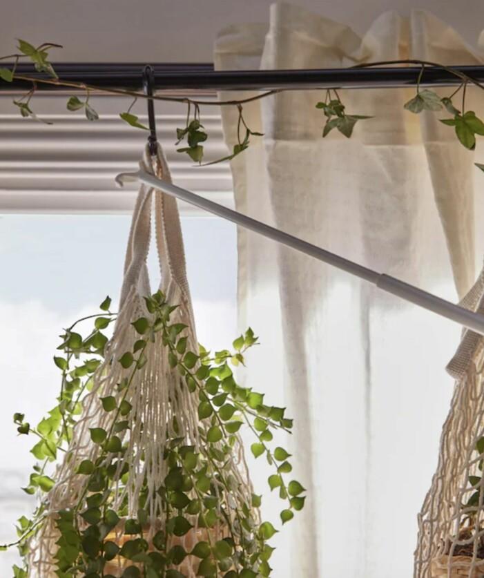 En gardinstång är bra att använda till din växtgardin
