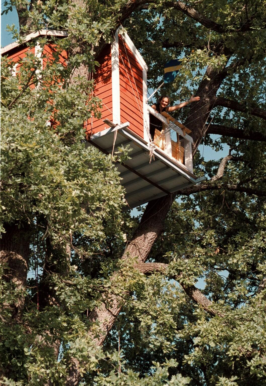 Hotell Hackspett, trädhushotellet uppe i ett träd i centrala Västerås.