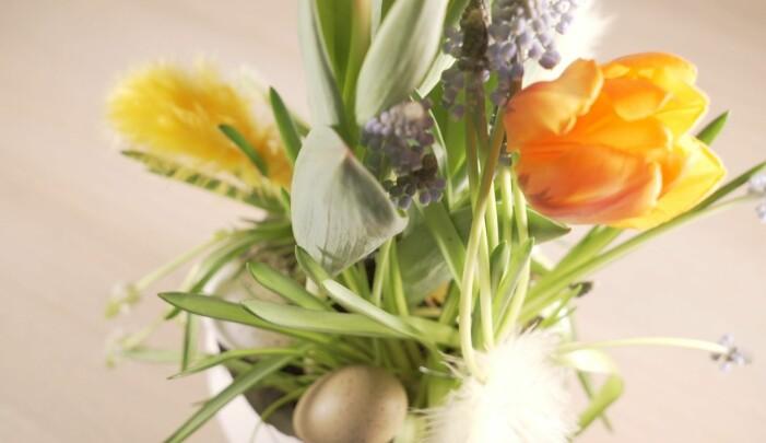 Tulpaner i en vit kruka.