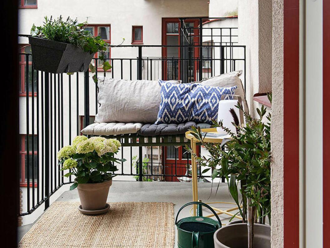 Mysig balkong med växter och kuddar i skandinavisk stil