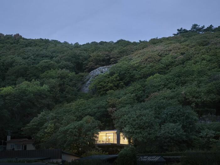 Sommarhuset inbäddat i grönska