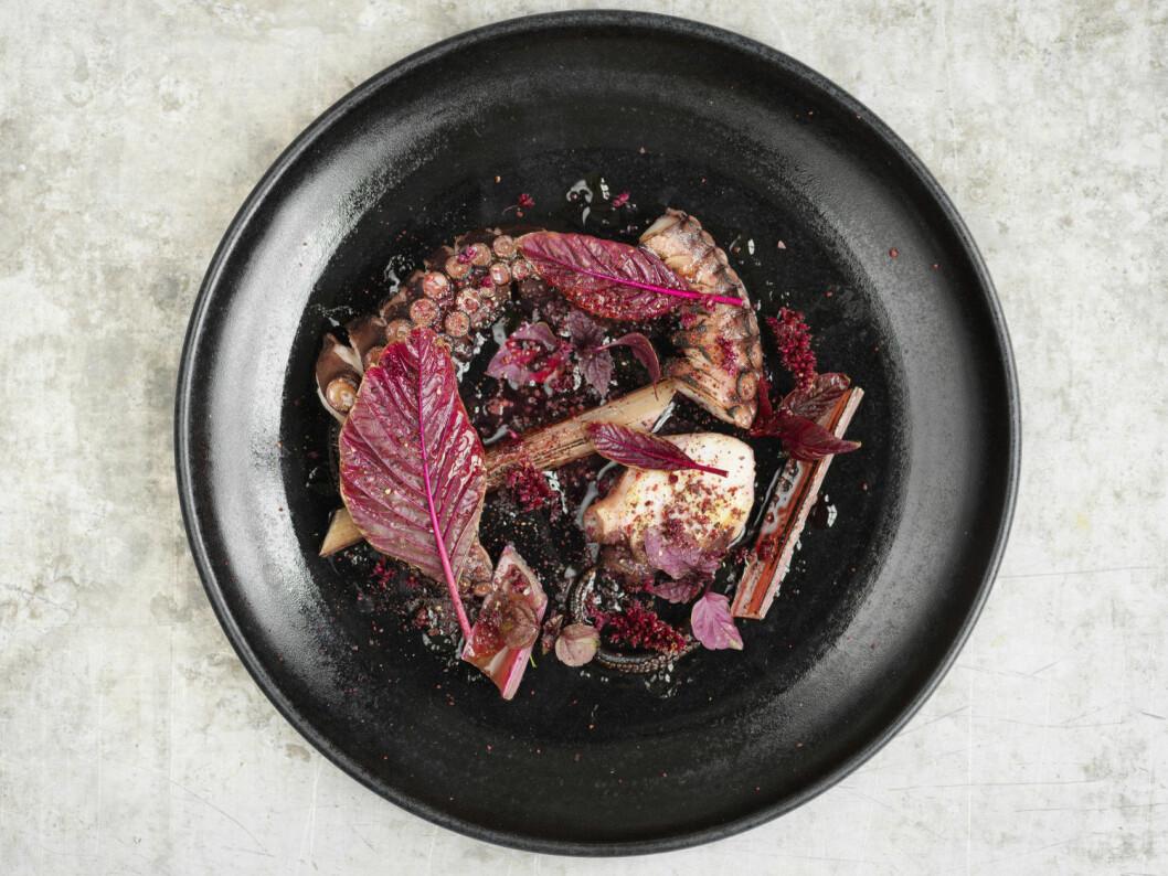 Grillad bläckfisk av Frida Ronge.