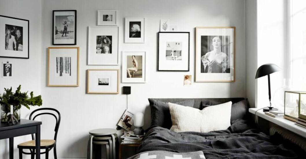 Sju tavelväggar att hämta inspiration från när du skapar din egen tavelvägg hemma.