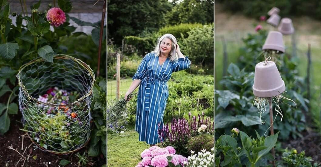 Hanna Wendelbo tipsar om DIY-projekt för trädgården.