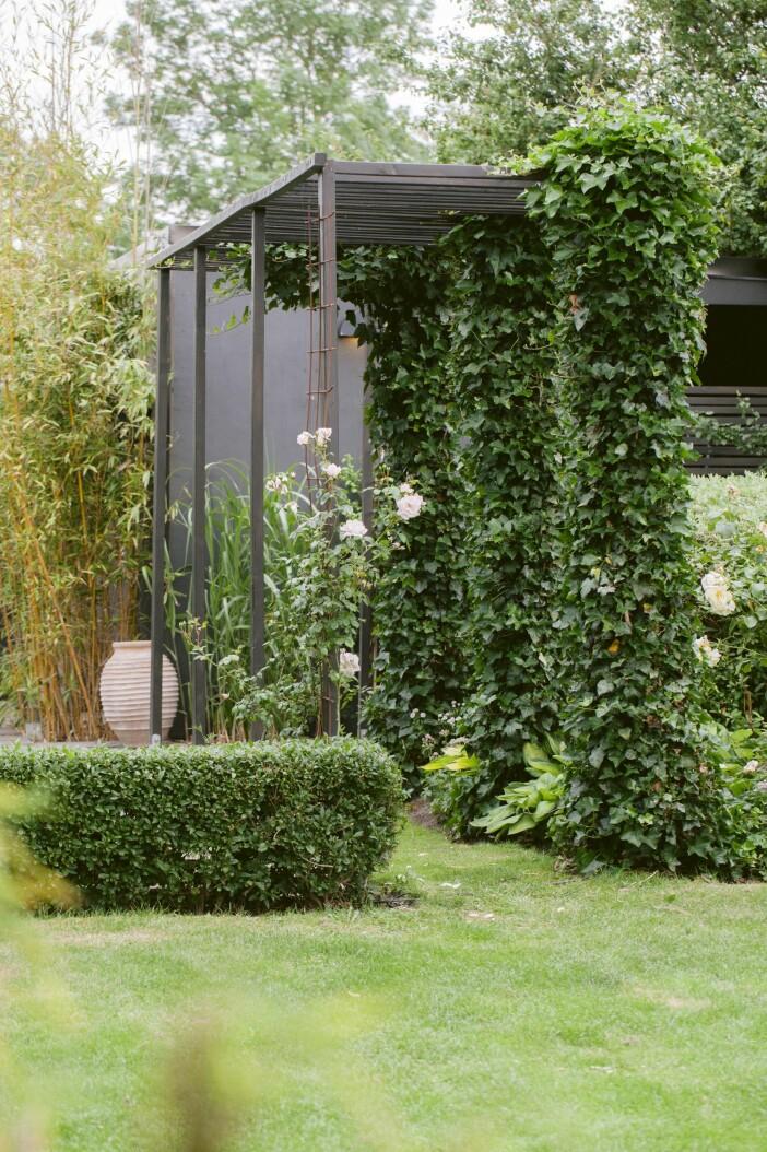 Trädgården i Lomma uterum pergola