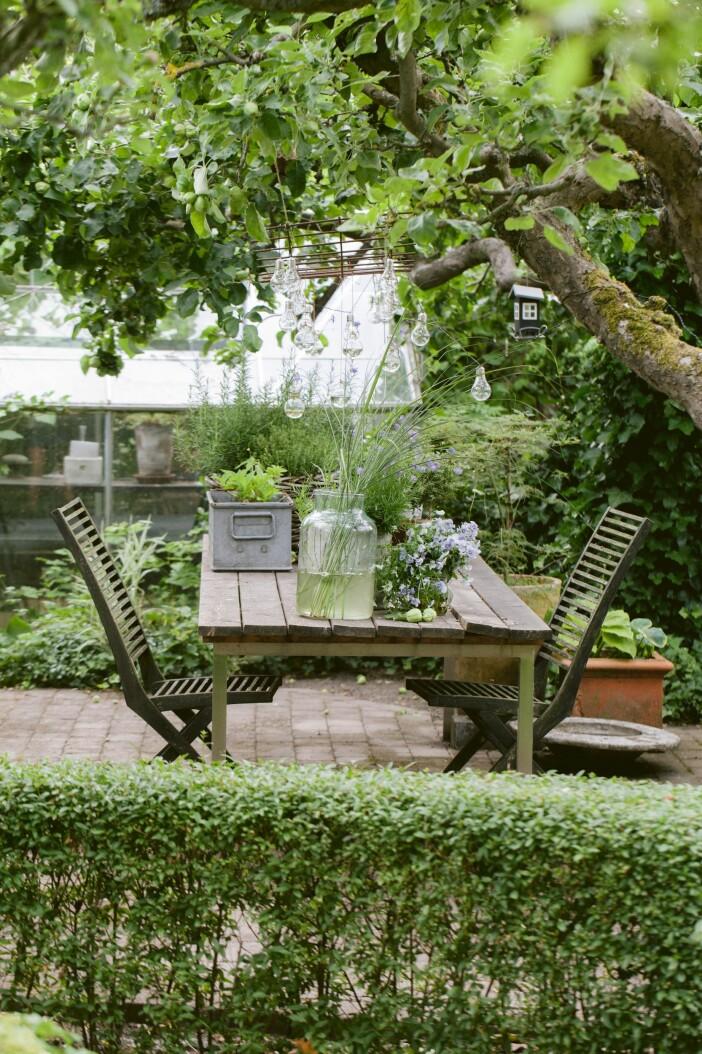 Trädgården i Lomma uteplats