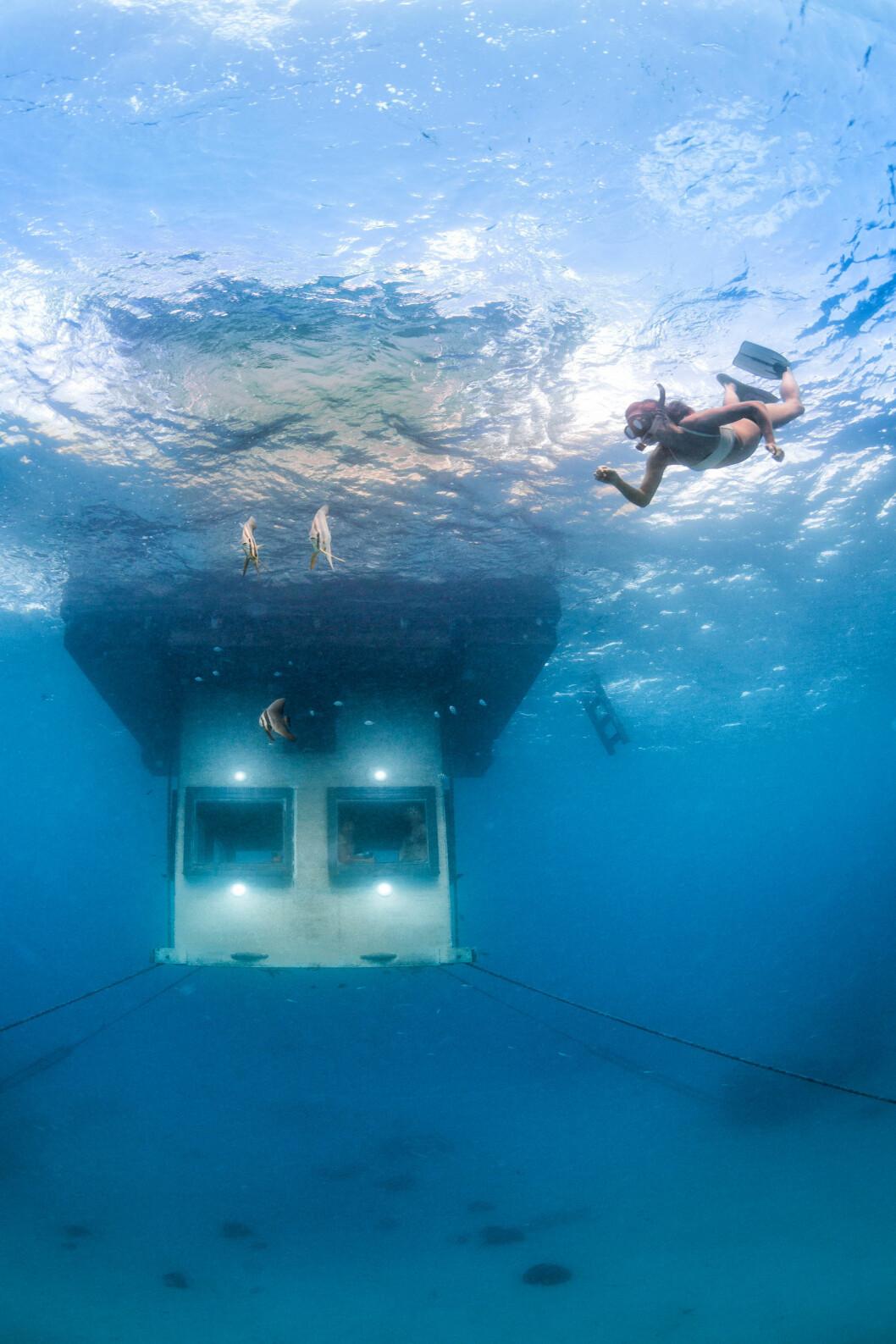 En undervattensbild på The Manta Underwater Room.